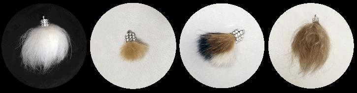 犬猫ウサギペットの毛