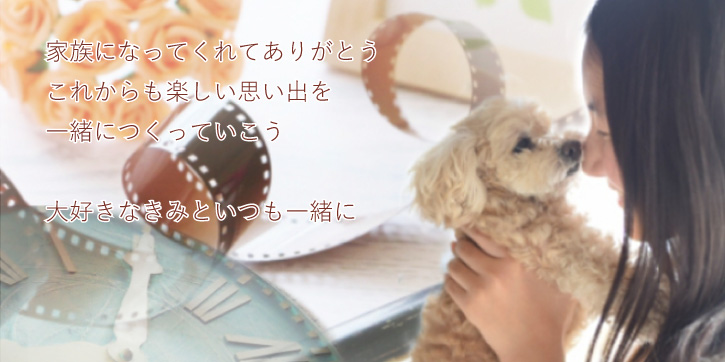 ペットロスの犬猫供養オリジナルメモリアルグッズ