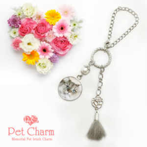 ペットの記念品はペットロスを癒すポイントの一つ